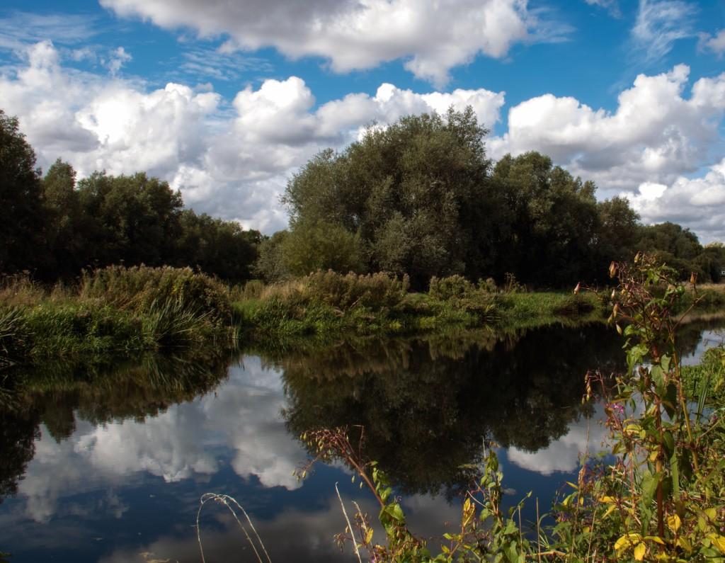 river nene small